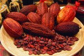 cacao: mucho más que solo chocolate
