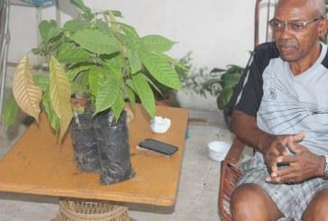 Proyecto de reactivación de cultivo de cacao cambia vidas a productores