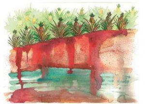 Este agroquímico penetra por el suelo hasta los mantos acuíferos y contamina el agua que abastece las comunidades.