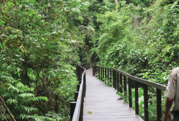Áreas protegidas y sus comunidades son beneficiadas con programa de turismo sostenible