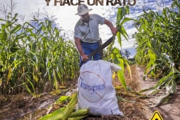 ''20 Cañas'' de sabor caribeño y crítica social