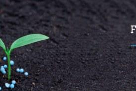 Colono Agropecuario se consolida como empresa líder en Centroamérica