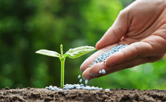 Costa Ria, en la mira de los fertilizantes para una agricultura sostenible