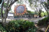 Consejo Universitario pide a Asamblea Legislativa no aprobar reforma fiscal en segundo debate
