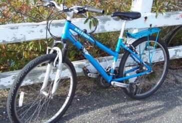 El fomento de la movilidad ciclística estará respaldado por ley