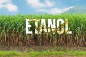 Defensoría solicita a Recope y Minae  estudios ante posible reinicio de iniciativa sobre el etanol