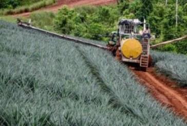En Costa Rica: ¡Los alimentos tienen cada vez más veneno!