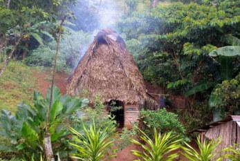 Comisión Interamericana de Derechos Humanos admite petición de comunidad indígena Terraba contra Costa Rica
