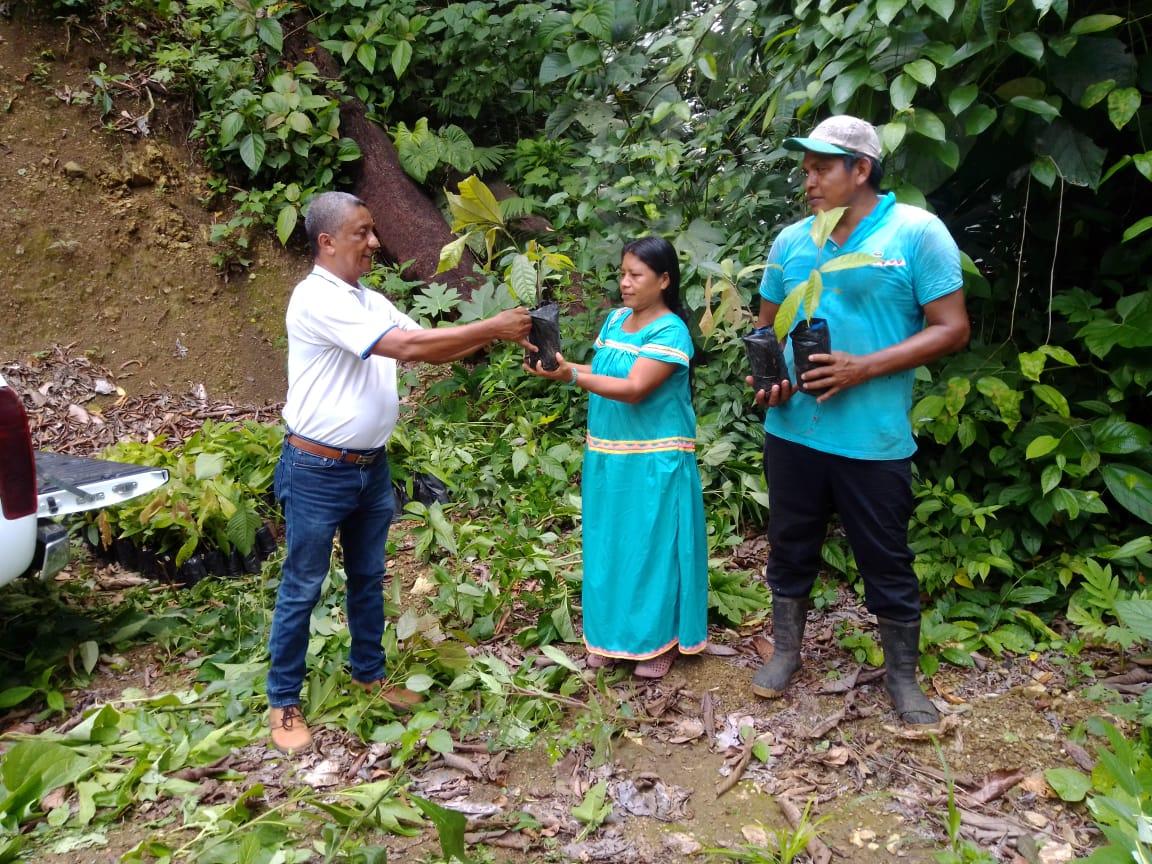 Pueblos indígenas reciben $1 584 millones en poyectos de desarrollo del INDER