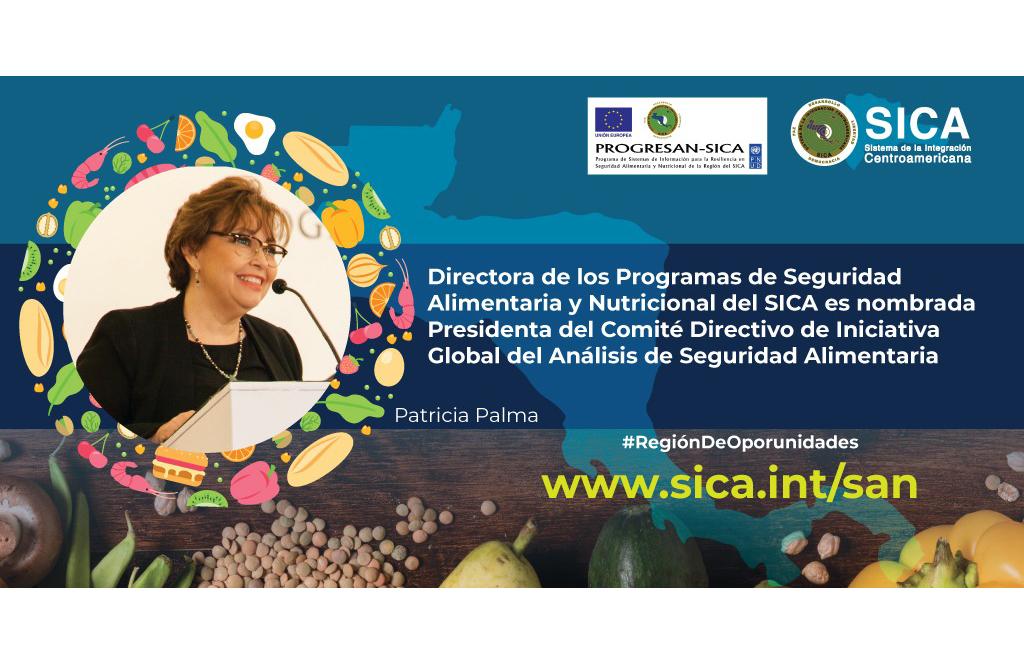 Directora de los Programas de Seguridad Alimentaria y Nutricional del SICA es nombrada presidenta del Comité Directivo de Iniciativa Global del Análisis de Seguridad Alimentaria