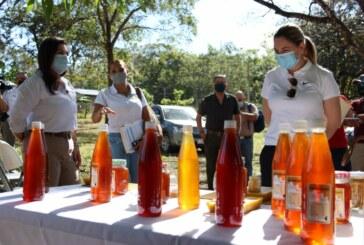 Construirán mercado artesanal y planta procesadora  de miel en Curubandé de Liberia