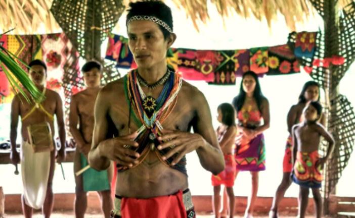 En Panamá: Indígenas de Majé Emberá Drúa denuncian continuas amenazas de colonos e invasores desde el año 2019.