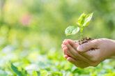 Día Mundial del Medio Ambiente.Ministerio de Salud, ECOINS y ALIARSE hacen llamado conjunto para la separación de los residuos ordinarios
