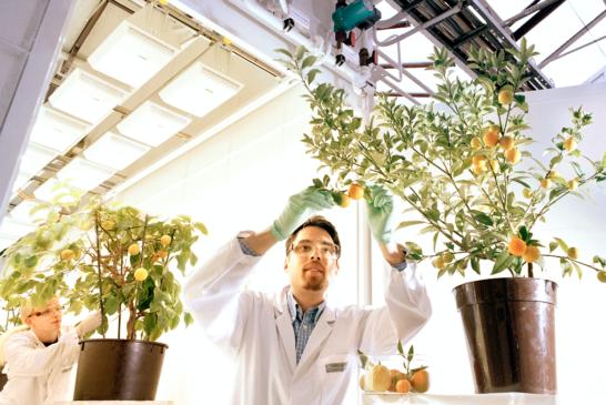 Bayer abre las inscripciones para el programa Grants4 Ag centrado en la sostenibilidad