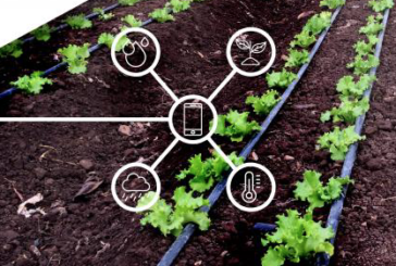 Agricultura Familiar podrá capacitarse en agrotecnologías de precisión basadas en IoT